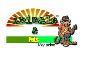 Animals and Pets Magazine